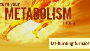 Turn your Metabolism into a Fat-Burning Machine
